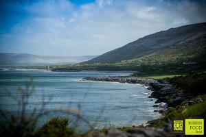 Burren Food Trail (1 of 1)-3